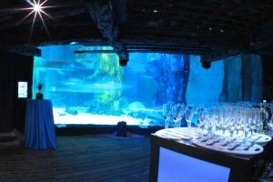 FitzGerald-Photographic_Events-Photography_SEA-LIFE-London-Aquarium-(3).jpg
